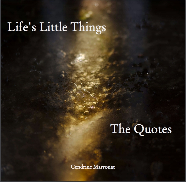 Life's Little Things: The Quotes
